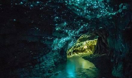 新西兰 北岛霍比特萤火虫罗托鲁阿4日游全四星