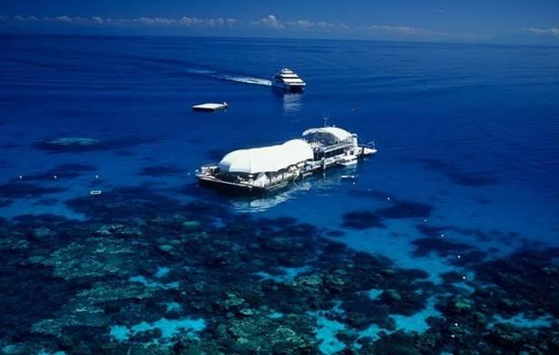 凯恩斯道格拉斯港纯美3日游☞库兰达热带雨林+大堡礁+棕榈湾+道格拉斯港+4星酒店+免费赠送