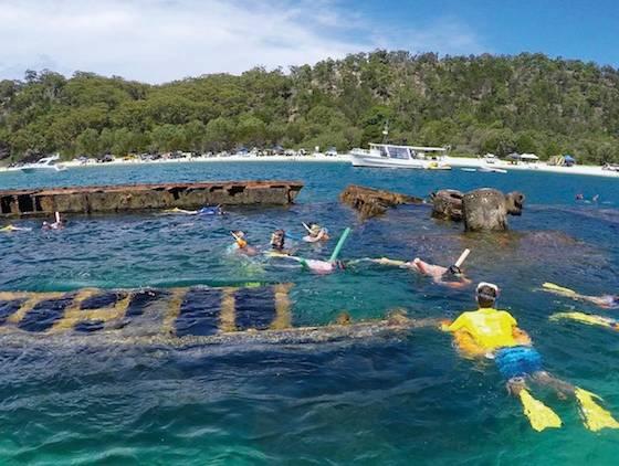 摩顿岛Morenton Island 一日游(英文团)☞布里斯班/黄金海岸两地出发 +天阁露玛沉船遗址+独木舟+浮潜+冲浪+滑沙+海滩午餐+海豚海龟